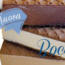 gelato-cremeria-vienna-bocconcino
